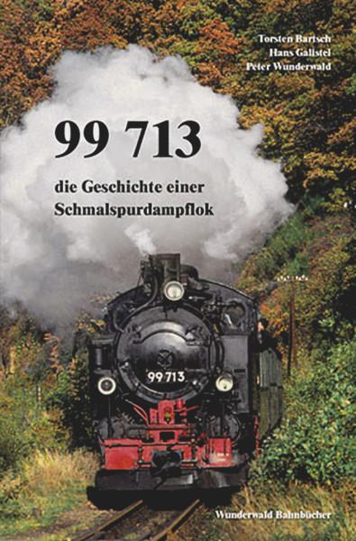 Buch 99 713